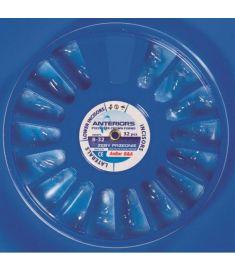 Ideiglenes korona poliészter 32 db front